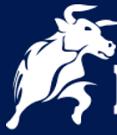 BlackBull Markets Trading Platform -MetaTrader 4